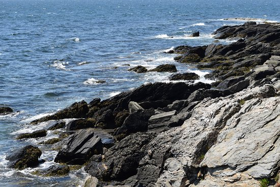 Prouts Neck, ME: jagged rocks formed by constant waves and wind.