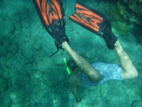 Nevis: Miles diving to the bottom to bring up 'show and tell'