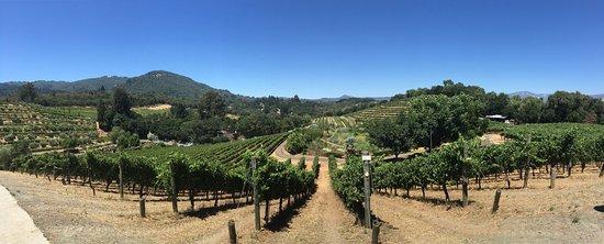 Glen Ellen, CA: photo1.jpg