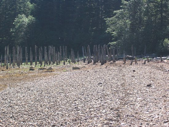 Douglas, AK: Pilings on Sandy Beach from the Treadwell Mine