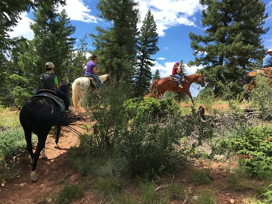 Triple B Ranch: Horseback riding