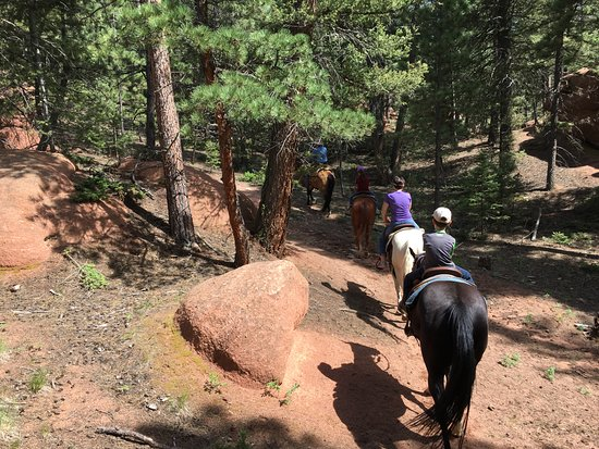 Woodland Park, CO : Horseback riding