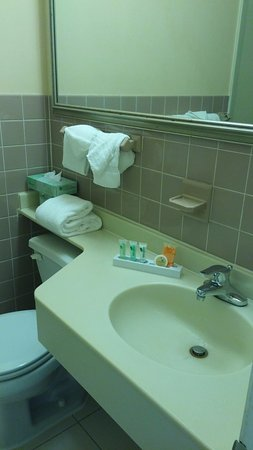 Garden Plaza Hotel: Bathroom with basic amenities