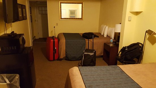 Aura Soma Lava: Room 6