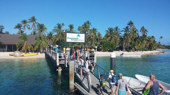 Plantation Island Resort-billede