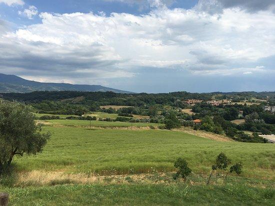 Reggello, Italia: photo3.jpg