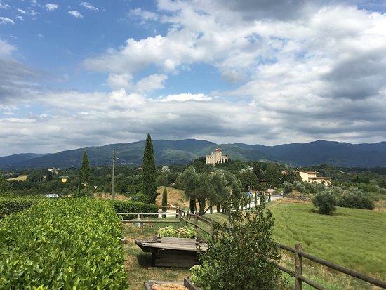 Reggello, Italia: photo4.jpg