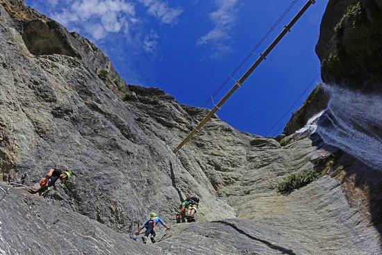 วานากา, นิวซีแลนด์: Wildwire Wild Thing Climb