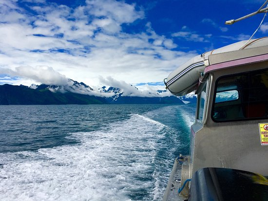 Allens Alaska Adventures: photo5.jpg