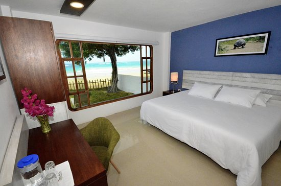 La Casita de la Playa: Superior Ocean Double Room