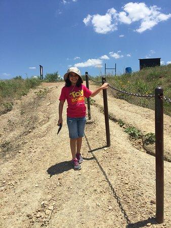 Mineral Wells, تكساس: Fossil Park