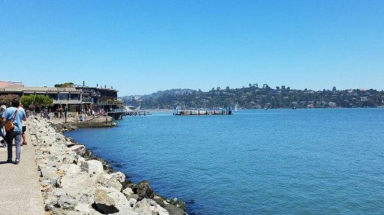 Sausalito, كاليفورنيا: ゴールデンゲートブリッジ観光の際は必ず来るようにしています。思い出に残ります。