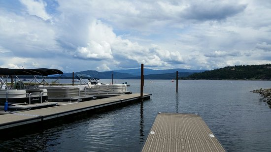 Cottonwood Cove RV Resort: Marina