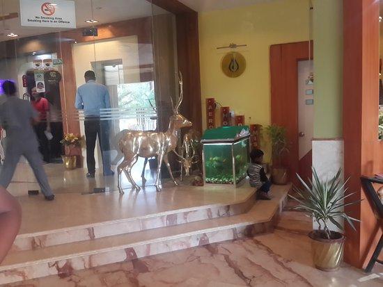 Hotel Shakti International: Hotel LOBBY