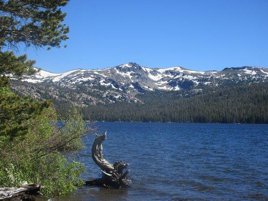 Placerville, Καλιφόρνια: Caples Lake ,Eldorado National Forest, Ca