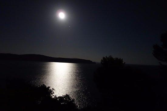 [Immagine: notturno-con-luna-crescente.jpg]