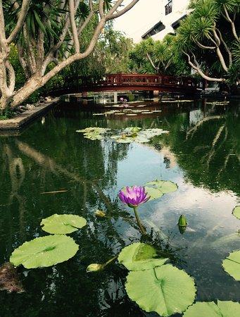 Palm Garden Beach Resort & Spa: photo9.jpg