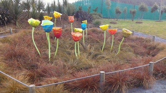 Taupo, Nieuw-Zeeland: P_20160724_111624_large.jpg