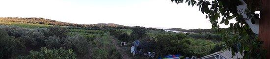 Sveti Klement Island 사진