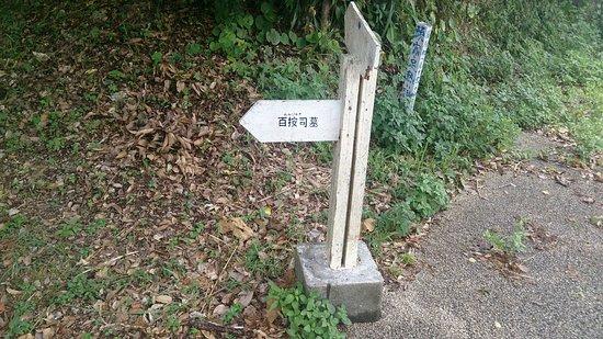 Nakijin-son, Giappone: DSC_3772_large.jpg