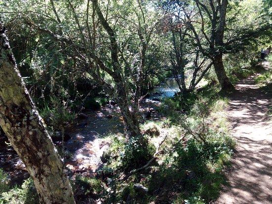 Montejo de la Sierra, إسبانيا: PASEO AGRADABLE