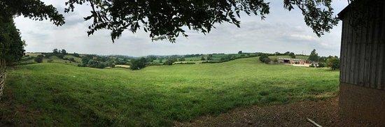 ليسترشاير, UK: Views from the fruit farm, as you sit and have tea.
