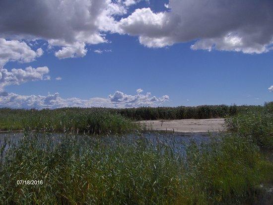 Parnu Coastal Meadow Protection Area