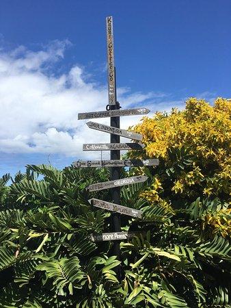Kalaheo, Hawaï : photo2.jpg