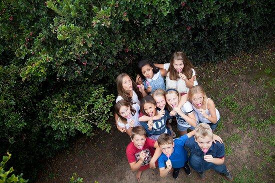 Redberry Farm: Hedge Maze
