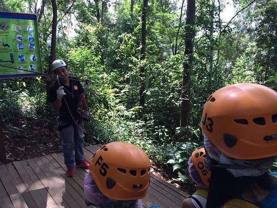 Provincia di Chiang Mai, Thailandia: Jungle flight 3