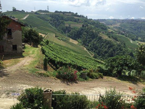 Mango, Italia: photo0.jpg