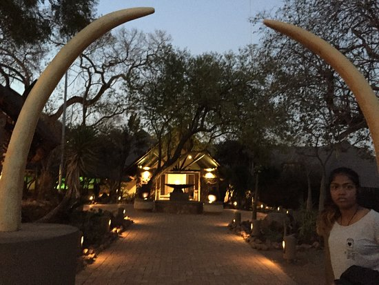 Mabula Private Game Reserve, جنوب أفريقيا: Mabula Game lodge - views and safari..