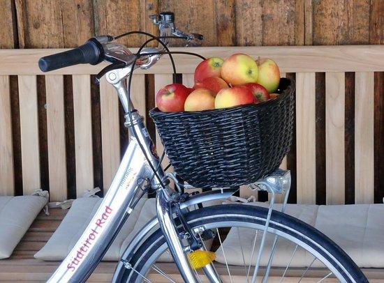 Bici Alto Adige - Noleggio Bici