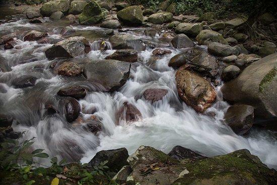 Minca Rivers and Rocks