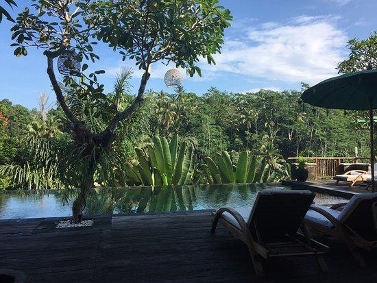 Tegalalang, Indonesien: photo0.jpg