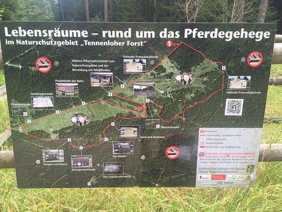 Tennenloher Forst