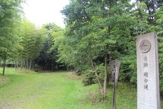 Miyakonojo, Japón: 散歩道
