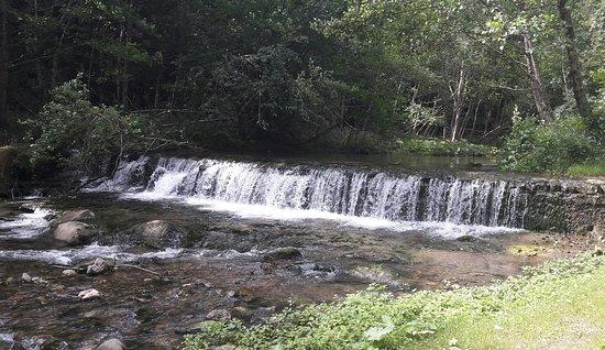 Camporgiano, Italië: Waterfall in backyard