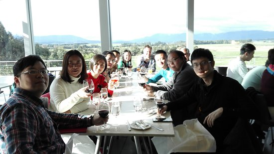 Vinetrekker Wine and Food Tours: lunch at yering vineyard.