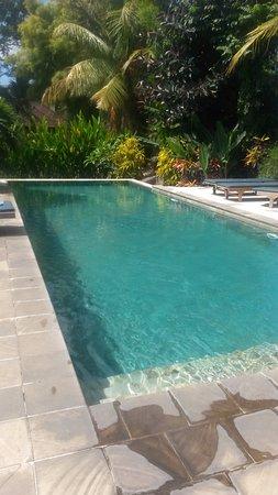 แกร์บิก บังกะโลส์: Pool with rice fields view in the corner
