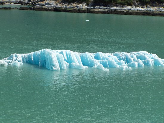 Tracy Arm Fjord: ICEBERG! The cruise ship brought on 2 guides to get us safely thru the Fjord.
