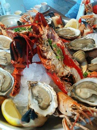 Wenduine, Bélgica: hier een deel van onze zeevruchten...