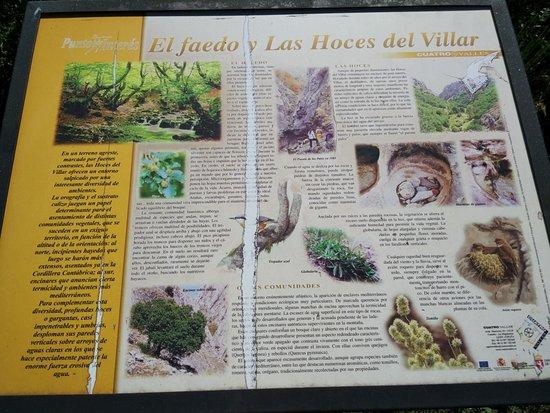 Bosque del Faedo: Cartel informativo