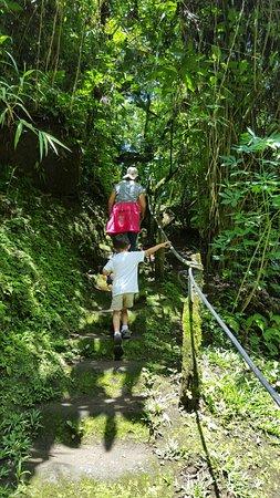 Tilarán, Costa Rica: 20160724_112653_large.jpg