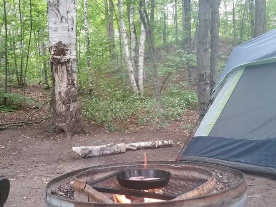 Fisherman's Island State Park: Camp site 46