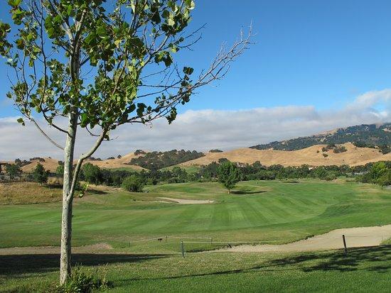 Callippe Preserve Golf Course