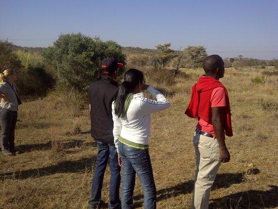 Welgevonden Game Reserve, Güney Afrika: Guided Walk