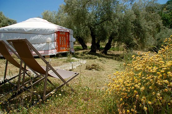 Casa Valle de Oro: Private terrace of a Yurt, with view on the lovely stream