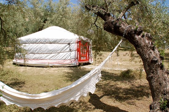 Casa Valle de Oro: Nestle yourself in one of the hammocks and enjoy the silence of nature