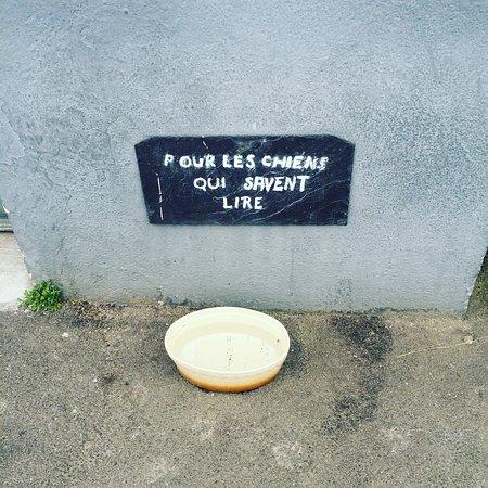 Ile-aux-Moines, Frankrijk: photo0.jpg